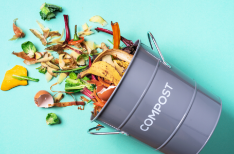 A Beginners Guide to Vermicomposting